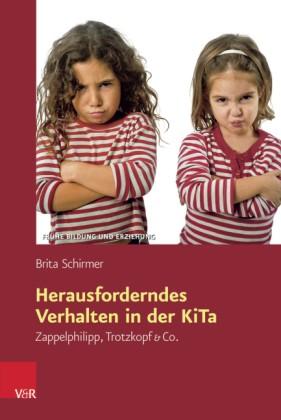 Schirmer: Herausforderndes Verhalten in der KiTa