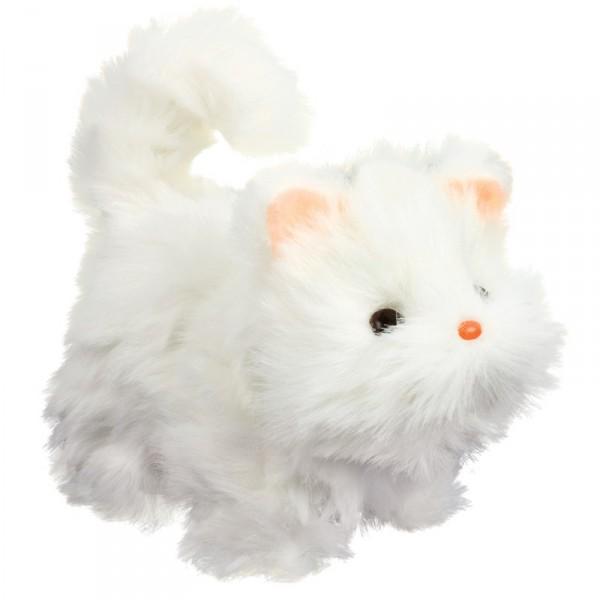 Mimi – Katze mit Bewegung