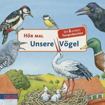 Hör mal- Unsere Vögel mit Tonmodul