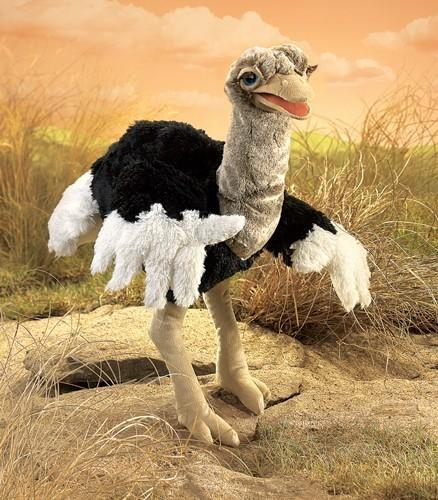 Vogel Strauß