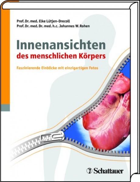 Lütjen-Drecoll/Rohen: Innenansichten des menschlichen Körpers