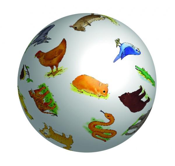 Wörterball Tiere