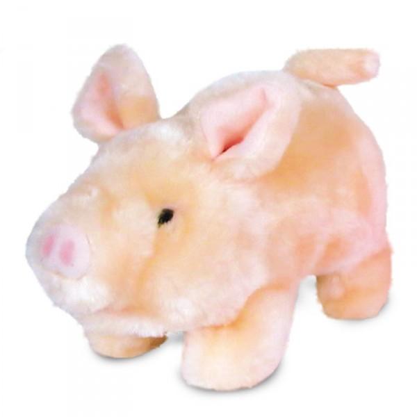 Freddy – Schweinchen mit Bewegung